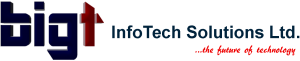 BIGT InfoTech Solutions Limited